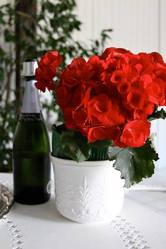 Wine Bottle with Red Flowers